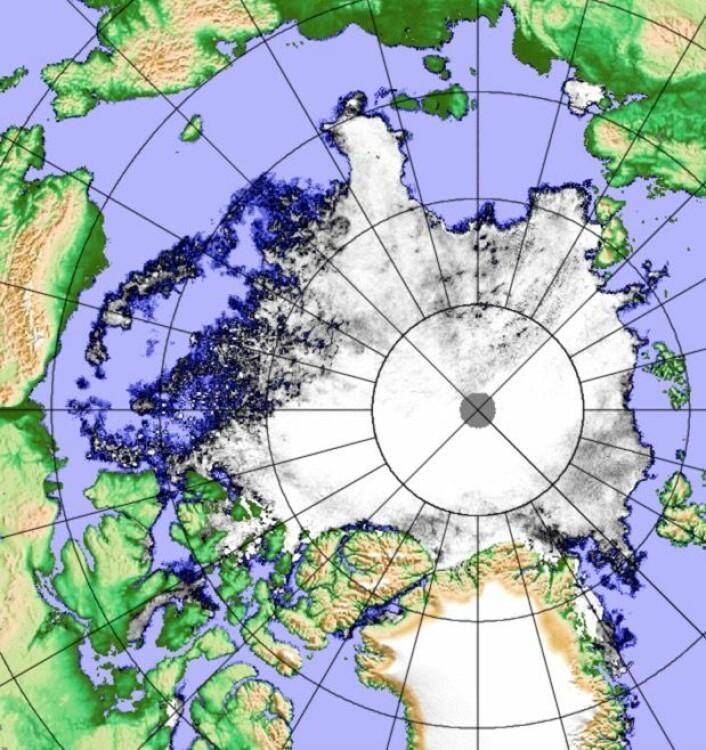 Sjøisen i Arktis 20. august, sett fra den japanske satellitten. (Bilde: PolarView/Univ i Bremen).