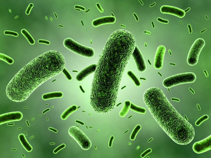 Noen bakterier kan overleve på en diett av plantevernmidler og antibiotika. Nå har forskere funnet ut hvordan.  (Illustrasjonsfoto: Microstock)