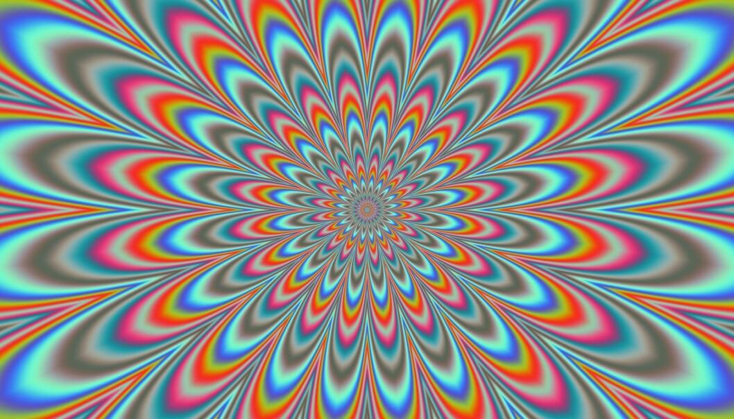 Til våren skal danske hjerner testes med det psykedeliske stoffet psilocybin. Det skjer som et ledd i et forskningsprosjekt som skal undersøke hvordan stoffet påvirker hjernen.  (Illustrasjonsfoto: Microstock)