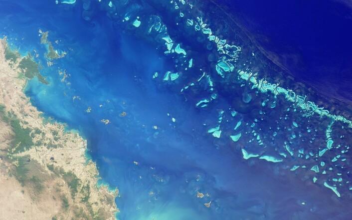 Verdas største korallrev, Great Barrier Reef, er berre eitt av mange korallrev som er trua av global oppvarming og havforsuring. (Foto: NASA)