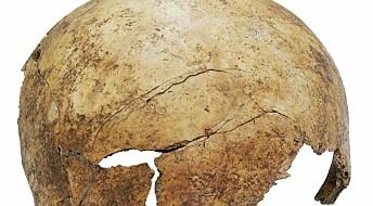 Rester etter steinalder-massakre funnet i Tyskland