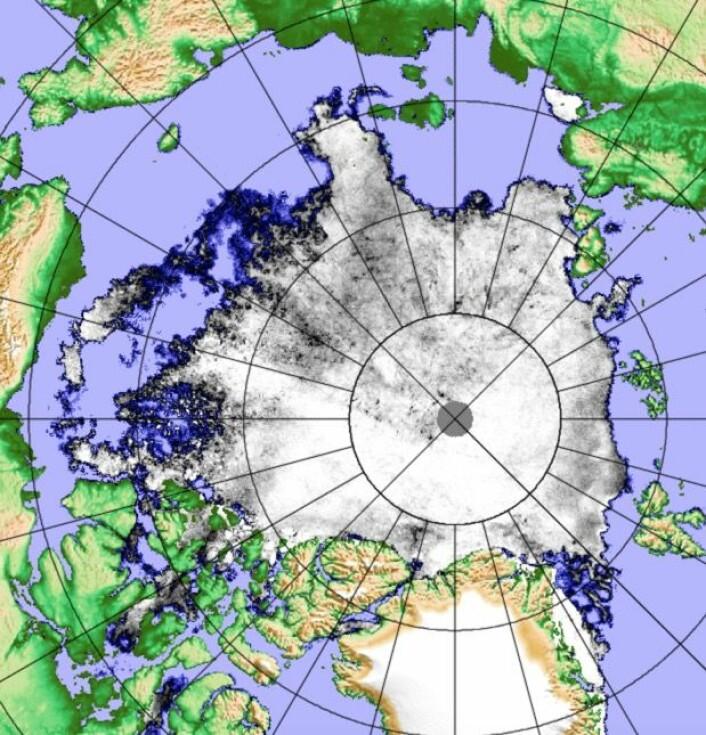 Sjøisen i Arktis 14 august, basert på data fra den japanske klimaovervåkningssatellitten. (Bilde: PolarView/Univ i Bremen)