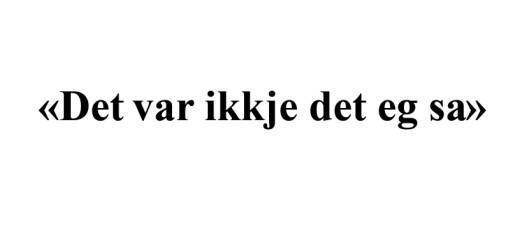 Å sitere ein forskar