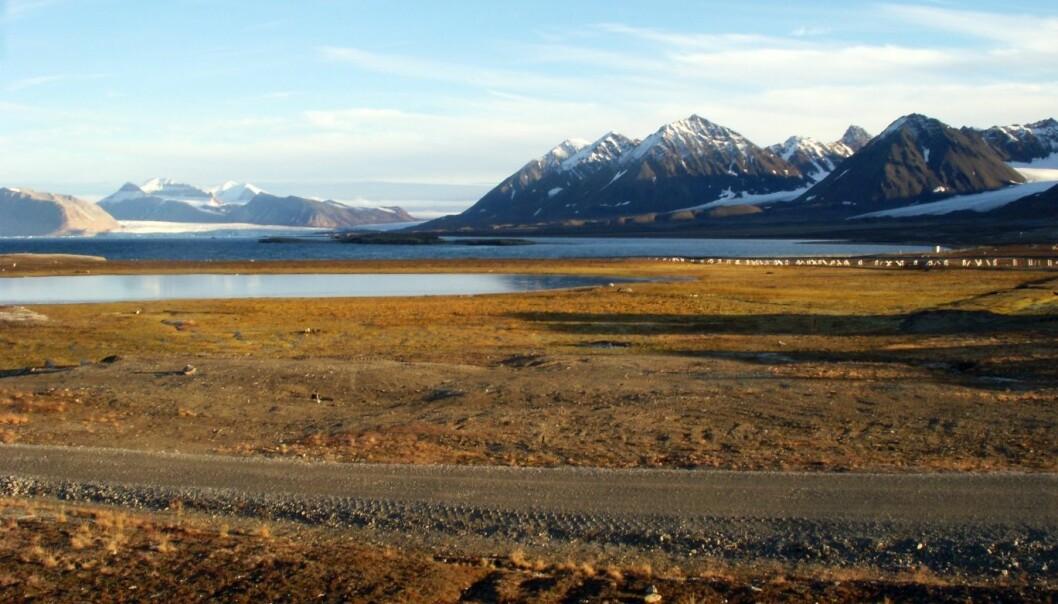 Myr og hav, begge er kilder til metan. Bildet er fra Ny-Ålesund. (Foto: Kjetil Tørseth, NILU)