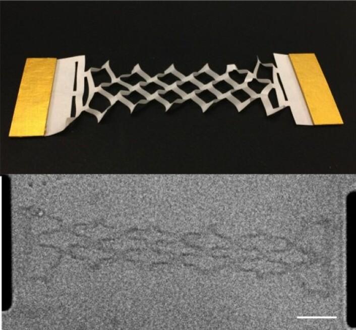 Det øverste viser en mer standard papirkirigami-versjon av fjæren. Det nederste bildet viser grafén-fjæren mens den er helt strukket ut. Den lille hvite stripen viser skalaen, som er 10 mikrometer, eller 0,00001 meter. (Foto: McEuen Group, Cornell University)