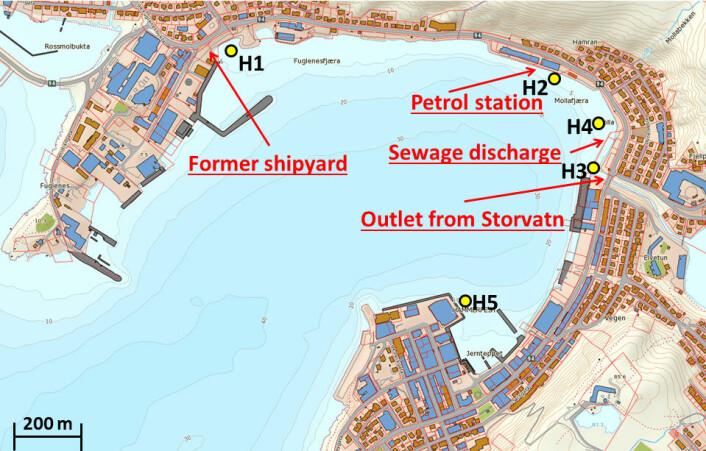 Kartet viser havnebassenget i Hammerfest. Fra fem steder i havna ble bunnprøver analysert og forsøkt renset med den nye elektrodialysemetoden. (Foto: (Kart: UiT))