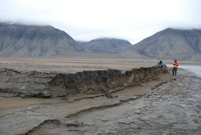 Avsetninger dannet i bresjøen som ble demmet av Paulabreen. Radicarbondateringer over og under disse viser at innsjøen og dermed bredemningen, eksisterte for cirka 600 år siden. (Foto: Astrid Lyså, NGU)