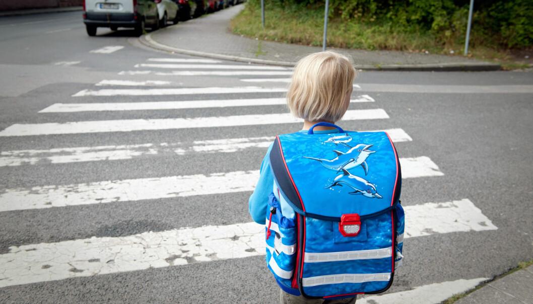 Mange barn går til skolen. Men hovedårsaken til at noen foreldre velger å kjøre, er at barna må gå alene i trafikken. (Foto: Jan Haas,NTB scanpix)