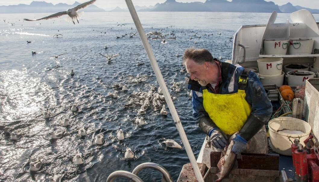Fiskerne mener de selv bør følge lover og regler for å bevare fisken i havet. (Foto: Jan-Morten Bjørnbakk, NTB scanpix)