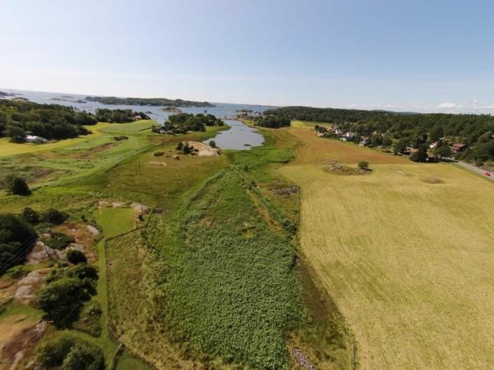 Kaupang sett fra luften. Utgravningsfeltet ligger i boligfeltet t.h. i bildet.  (Foto: Foto Magne Samdal, Kulturhistorisk museum.)