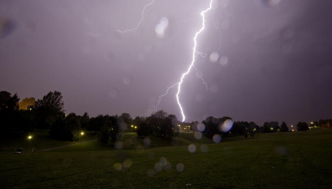 I tidsperioden 22. juni til 22. juli i fjor slo det ned 22 500 ganger. På samme tid i år har det bare vært 5600 lynnedslag.          (Foto: Stian Lysberg Solum, NTB scanpix)
