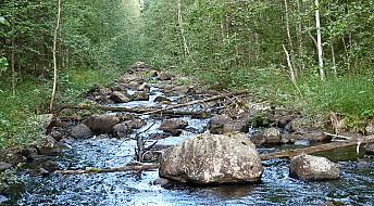 Det tar lang tid å reparere en elv