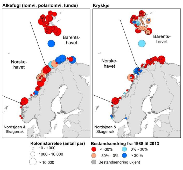 Norske sjøfuglbestander er i endring. Bestandene av lomvi og lunde har de siste 25 årene gått nedover i Norskehavet, men de har samtidig økt i den sørlige delen av Barentshavet. Krykkje har gått kraftig tilbake i hele Nord Atlanteren, også i de fleste koloniene i Norge. (Foto: (Grafikk: NINA))
