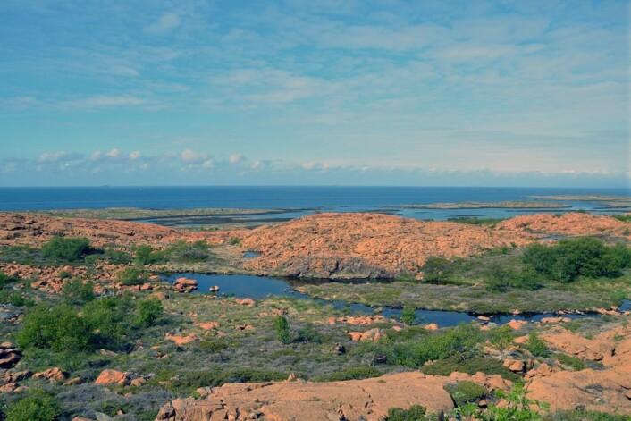 Strandflaten er godt utviklet på Leka. Den er preget av grunt hav, øyer og skjær, og et lavtliggende fastland som ender i en bratt skrent eller høyere fjell i bakkant. (Foto: Gudmund Løvø)