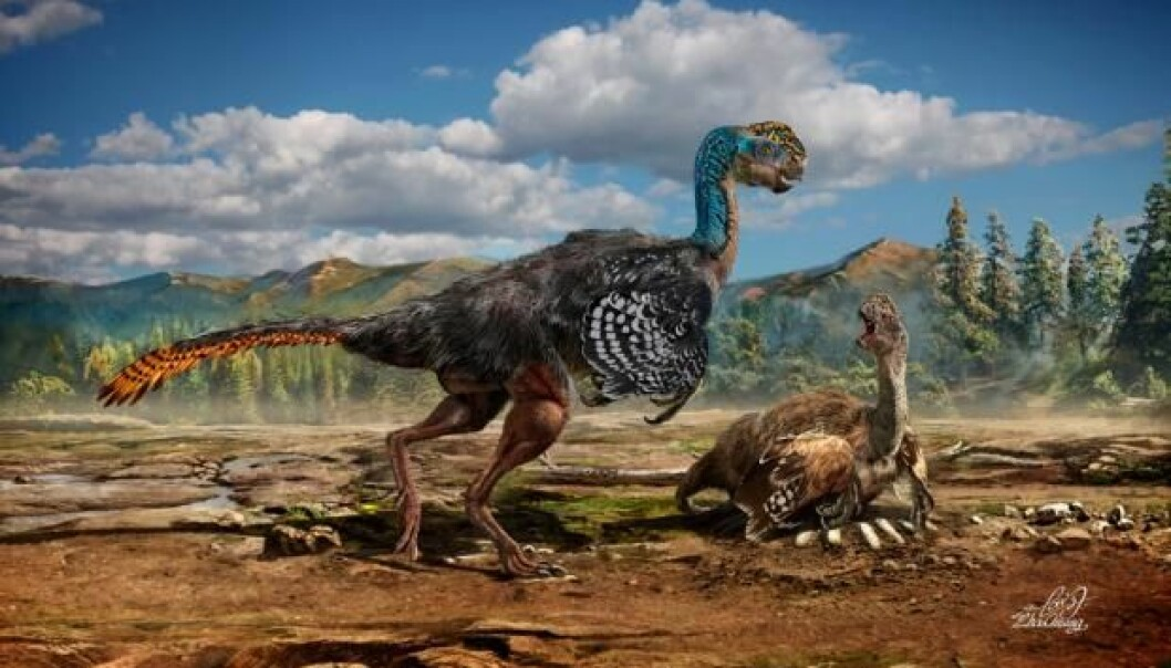 En kunstners beskrivelse av hvordan den nye dinosaurarten skal ha sett ut, med fjær og et merkelig hode  (Foto: Chuang Zhao)