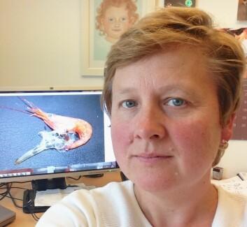 Prosjektleder Renée Katrin Bechmann fra International Research Institute of Stavanger. (Foto: Renée Katrin Bechmann)