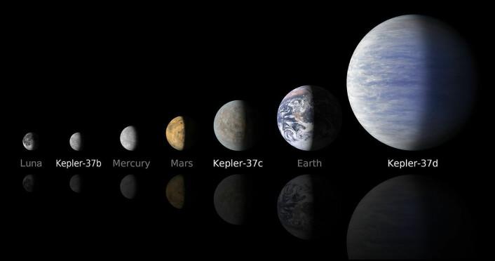 NASAs planetjeger, romsonden Kepler, har oppdaget mange planeter på størrelse med jorda. Her sammenlignes planeter i vårt solsystem og vår egen måne med tre planeter i bane rundt stjernen Kepler-37 i stjernebildet Lyren. Kepler-37c er rundt tre fjerdedeler så stor som jorda. Alle de tre planetene går så nær Kepler-37 at de trolig er for varme til å ha liv. (Foto: (Illustrasjon: NASA))