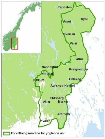 Forvaltningsområde for ynglende ulv. (Foto: Kartillustrasjon: Miljødirektoratet)