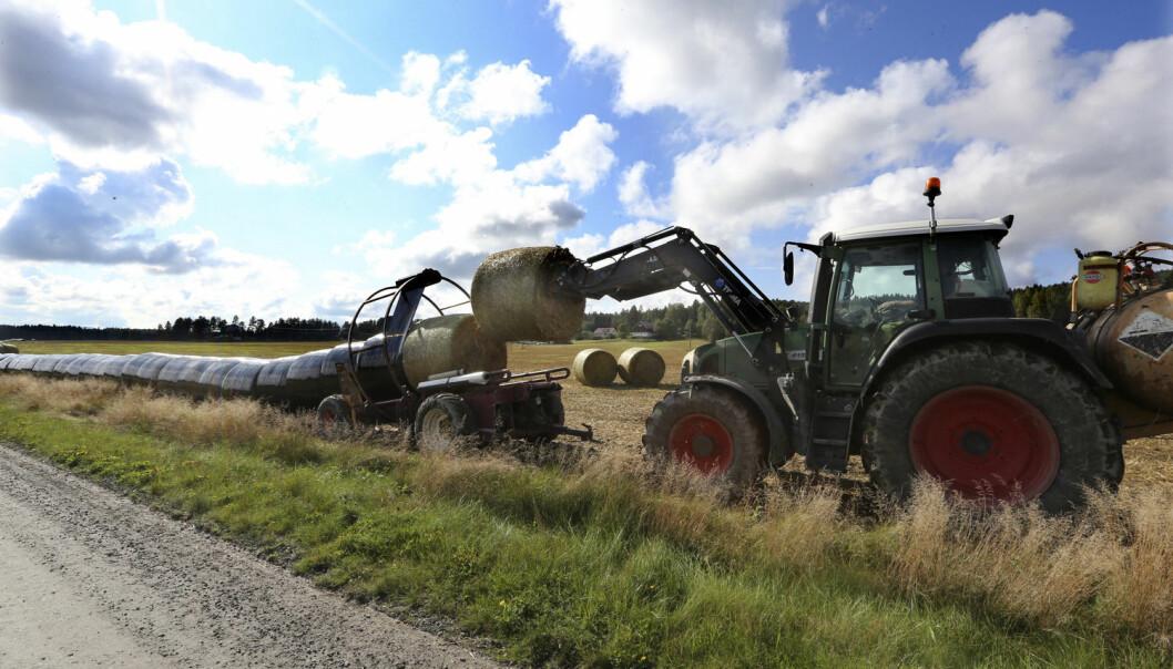 – Vår tanke er at konseptet skal hjelpe norske små og mellomstore produsenter av landbruksteknologi til å komme seg ut i verden.  (Foto: NTB Scanpix)