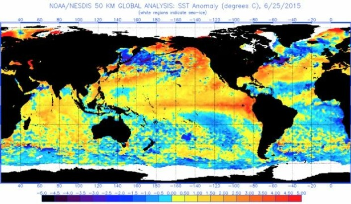 Havoverflatetemperatur (avvik fra normalen) 25. juni. (Bilde: NOAA)