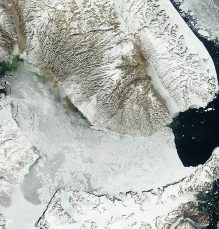 Scoresbysund sett fra NASAs satellitt Terra 26. juni. (Bilde: NASA Terra MODIS)