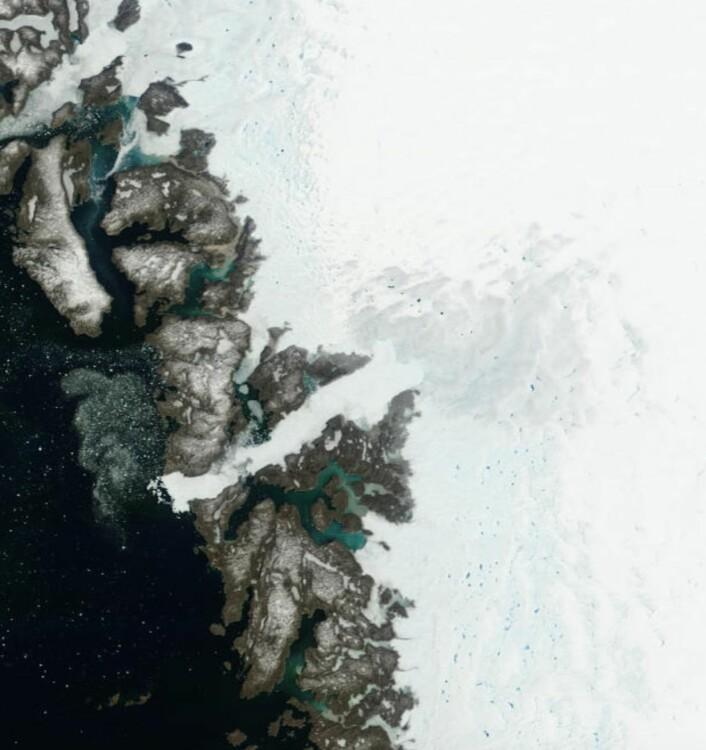 Jacobshavnbreen og smeltevannssjøer lenger inn, setter fra NASAs satellitt Terra 26. juni. (Bilde: NASA Terra MODIS)