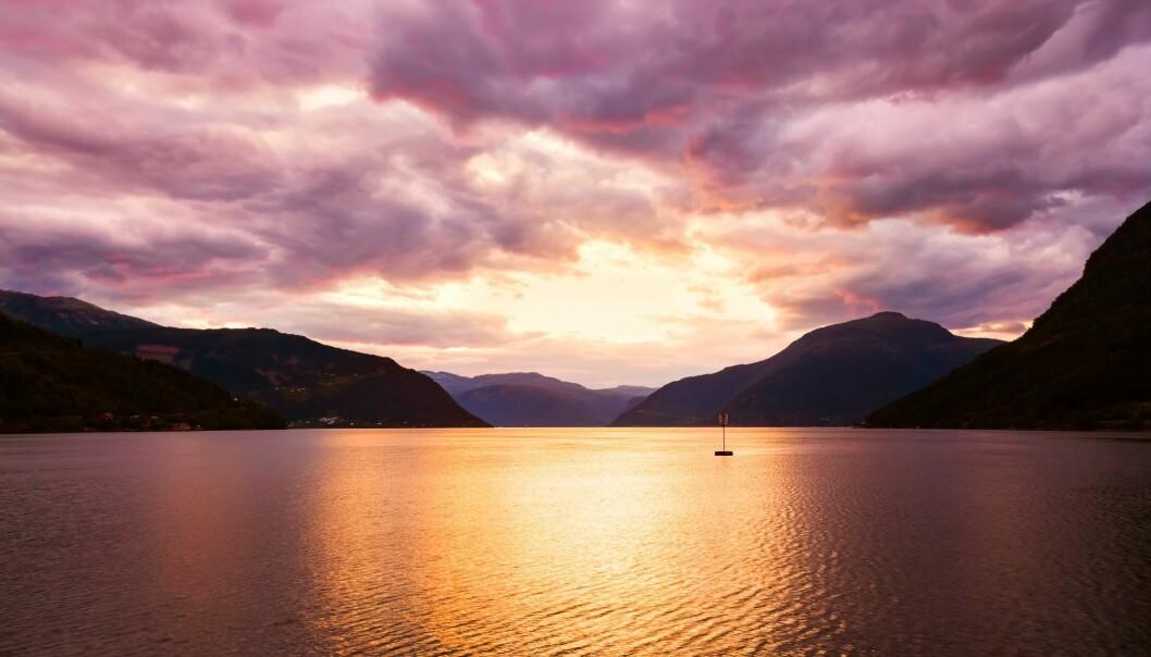 Solnedgang i Hardanger. Vi får meir energi og vert glade og nøgde av dei lange, lyse sommardagane. Men vi bør ikkje sova bort sumarnatta, meiner søvnekspert Bjørn Bjorvatn. (Foto: Colourbox)