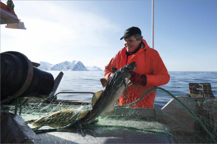 Fiskerne blir kalde på fingrene, men kroppen holder seg varm, nesten for varm.  (Foto: Johan Wildhagen, Sjømatrådet)
