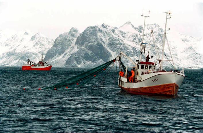 I fiskeflåten er det ekstremt få som noen gang har hatt psykiske helseplager. (Foto: Jean Gaumy)