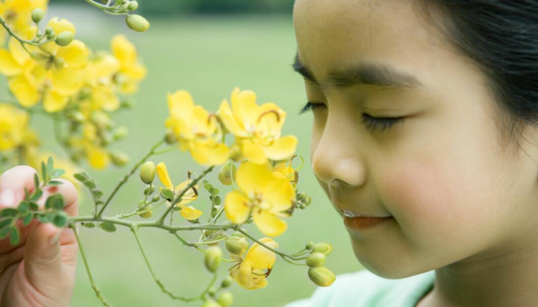 Hva skjer det med tankene våre hvis vi mister sansene? Spørsmålet er vanskelig å besvare: Vi kan jo ikke kommunisere med en person som har mistet sansene.  (Foto: Colourbox)