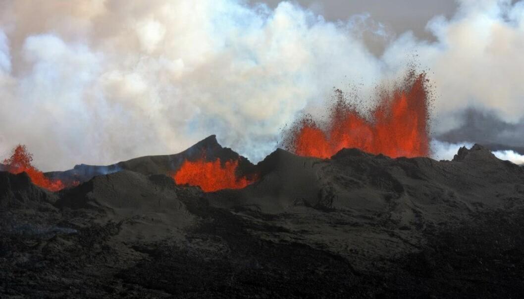 Utslipp av fra basaltiske vulkanutbrudd på Island har potensial til å «forstyrre» klimaet, ifølge nye beregninger. Bildet viser Nornahraun-utbruddet i september 2014. (Foto: Morgan Jones og Sverre Planke, CEED og VBPR)