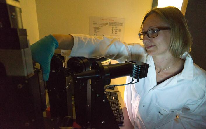 På Institutt for energiteknikk har Josefine Selj og hennes kolleger undersøkt hvordan ulike typer forurensing demper lyset gjennom glass ved forskjellige bølgelengder. (Foto: Arnfinn Christensen, forskning.no)