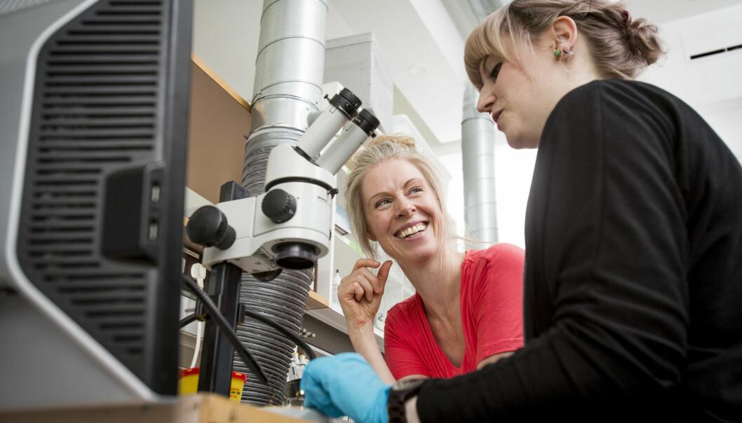 Skjult forskning gjør vitenskapen dårligere