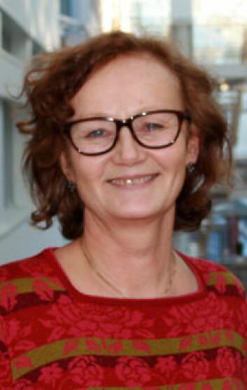 Kommunen er helten i dagens helsevesen, mener Marit Kristine Helgesen, seniorforsker hos Norsk institutt for by- og regionforskning (NIBR). (Foto: Jan-Tore Berghei)