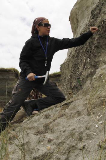 Forsker Lee Hsiang Liow på fossiljakt i New Zealand. (Foto: Kjetil Voje)