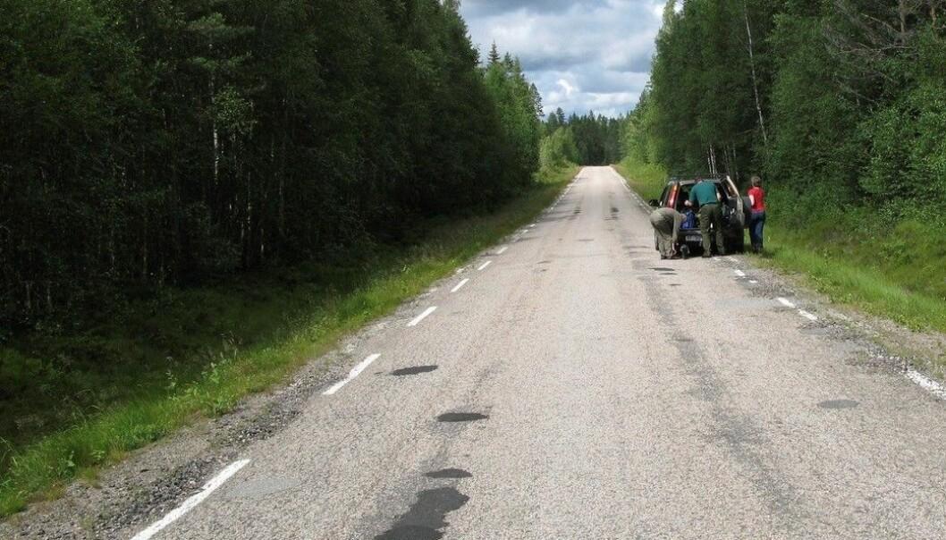 I år brukes 1,2 milliarder kroner på å fornye veidekket på norske riksveier. Her har en bil punktert på landeveien i Finnskogen. (Foto: Svein Aage Nilsen, NTB scanpix)