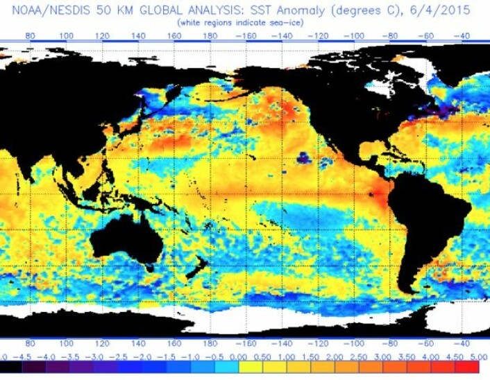 El Ninjo'en setter tydelige tegn i sjøtemperaturen i Stillehavet. (Bilde: NOAA)