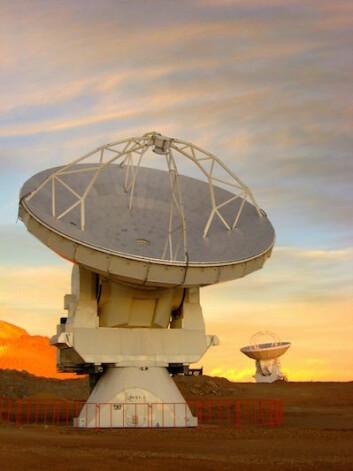 Nærkontakt med en av Almas antenner. (Foto: Jostein Kristiansen)