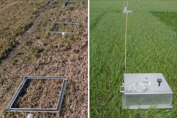 Forskarane måler klimagassutslepp frå faste ruter på omgravd, grøfta og naturleg myr. (Foto: Bioforsk/Norsk Landbruksrådgivning)
