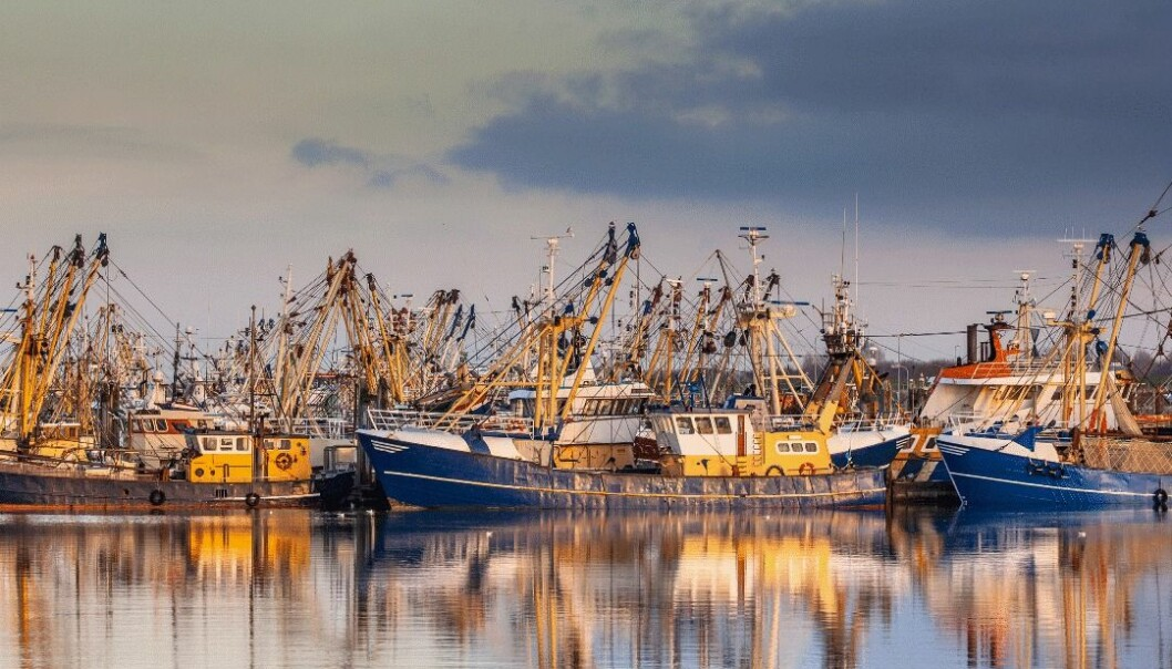Et fiskerisamfunn kan tjene godt på fangsten, men miljøet kan tape. Eller som i Alaska, der driften er økologisk bærekraftig, men dyr, sånn at den økonomiske gevinsten blir liten.  (Foto: Shutterstock)