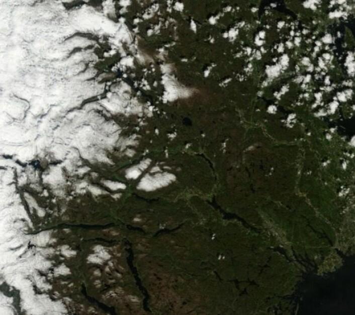 Telemark og Vestfold hadde solskinn da NASAs satellitt Terra passerte 23. mai. (Bilde: NASA Terra MODIS)