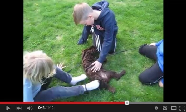 (Foto: Skjermdump fra YouTube)