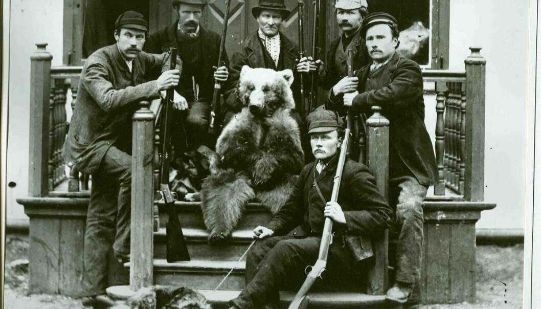 Rovdyrjakt i Sunndal. Bildet er sannsynligvis tatt i 1880-årene, og viser et jaktlag etter en bjørnejakt-suksess. (Foto: Nordmøre Museum)