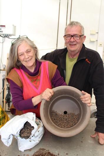 Anne Finnanger og Nils I. Skinnarland i Botanisk hage, Naturhistorisk museum, viser en velegnet potte med dreneringshull og delvis fylt med småstein og lecakuler.  (Foto: Dag Inge Danielsen)