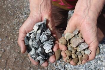 Alle typer småstein, grus, singel eller lecakuler kan brukes som drenering i bunnen av potter og kasser. (Foto: Dag Inge Danielsen)