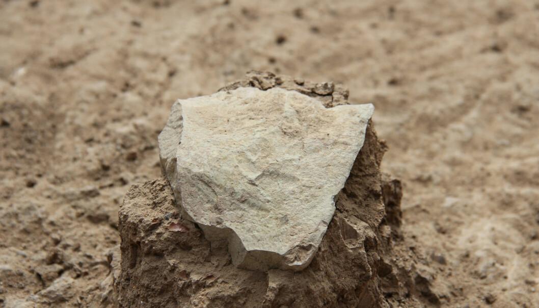 3,3 millioner år gamle steinredskaper funnet i Kenya