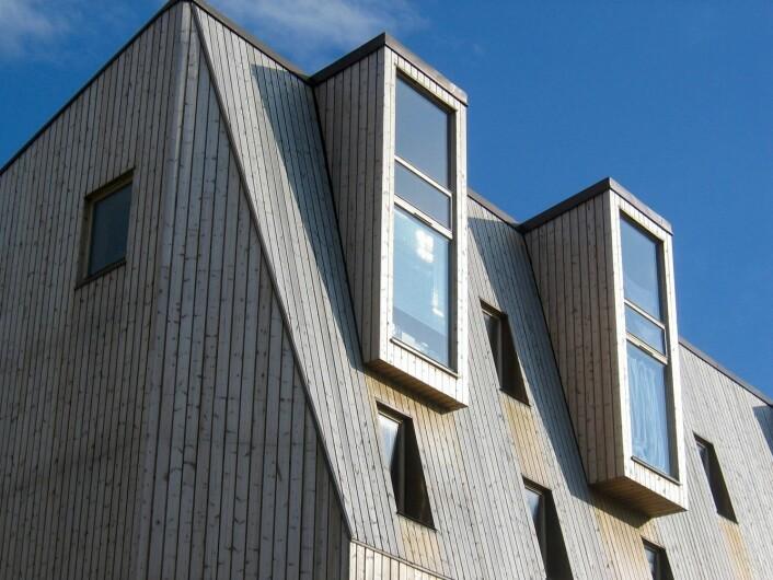 Tre fra innerst til ytterst: Femetasjes bygård i massivt tre på Svartlamon i Trondheim. Bygget er tegnet av Bredeland og Kristoffersen Arkitekter og er et av verdens høyeste hus oppført i massivt tre. (Foto: Lone Ross Gobakken, Skog og landskap)