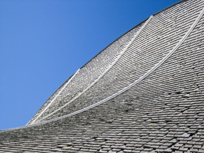 Tre på taket, jevnt væraldret treshingel. Fra taket på Breheimsenteret – informasjonssenter for Jostedalsbreen Nasjonalpark, som dessverre brant ned i juli 2011. (Foto: Lone Ross Gobakken, Skog og landskap)