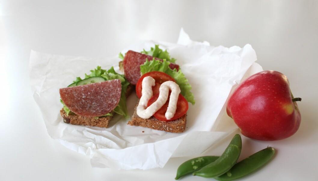 Salami og smelteost er fullt av salt og fett. Nå skal mye av det bort.  (Foto: Ellen Hovland, Animalia)