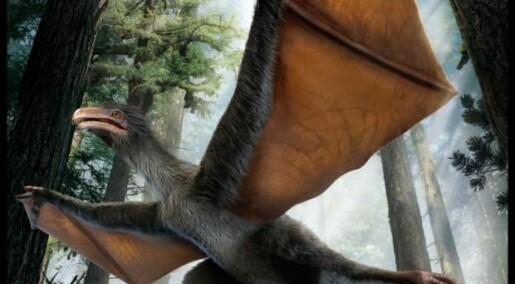 Dinosaur med vinger som en flaggermus